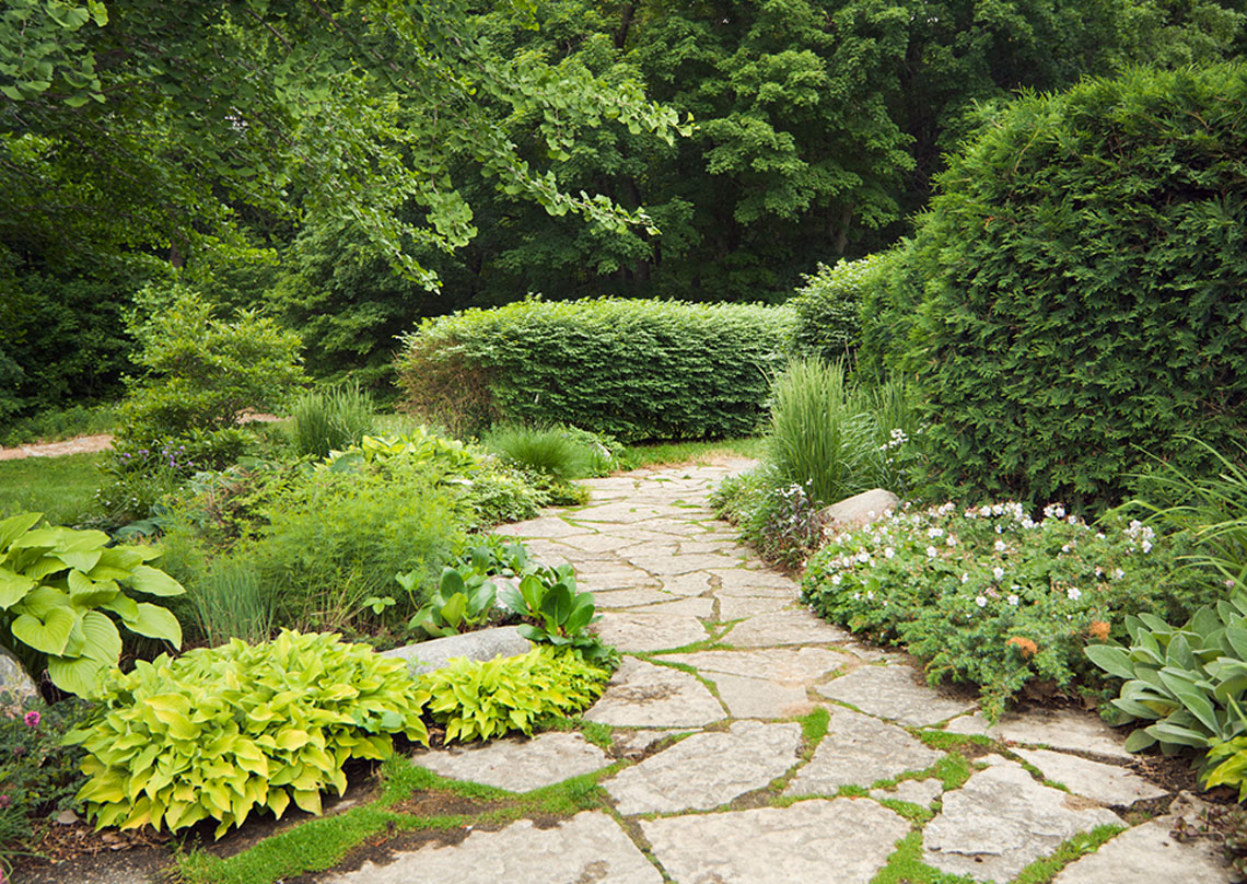 Residential and commercial landscape maintenance