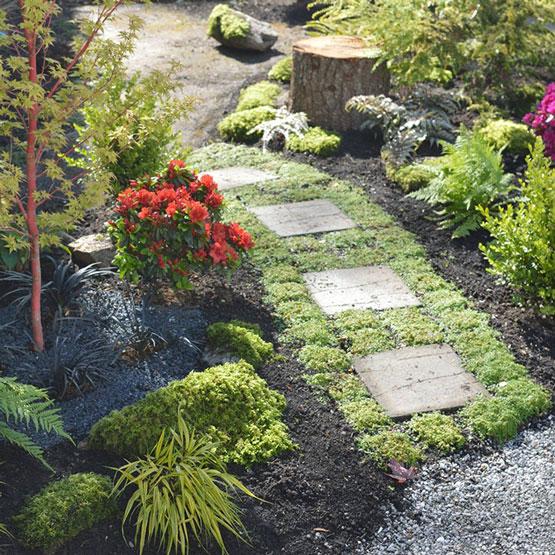 Victoria garden maintenance and landscape installation